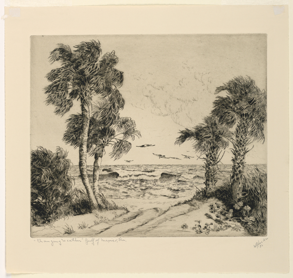 A sandy road leads between palm trees and low scrub to a beach, beyond which is seen a rough sea. Gulls hover over the beach.