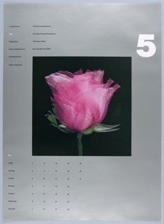 """On a silver ground, a central, square photograph of a double-exposed pink rose blossom, seen from the side, on a black background. Above, at right, a large, white, numberical """"3"""". At left, in two columns, """"A collection of / Time / Designed by / Danne & Blackburn Inc. / Photographed by / Steven Langerman"""" // """"Printed and published by / S.D. Scott Printing Company Inc. / 145 Hudson Street / New York New York 10013."""" Below, at left, a calendar for the month of May organized by day of the week."""