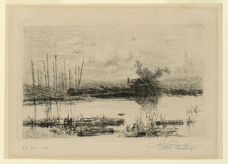 View of a lake with deserted mill at shore. Logs in water, at foreground. Trees at horizon. Clouds in sky.