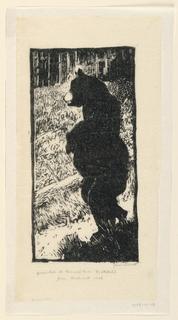 Print, Bear Standing on Hind Legs