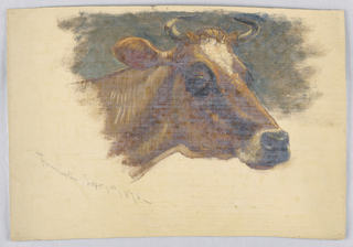 Head of a cow turned toward right. Dark background. Creamy grounding color is shown in margins,