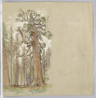 Trees on left half of page. Figures under the trees. Verso: trees, upper left; mountains running horizontally, lower left and upper right; mountains, upside down, lower right.
