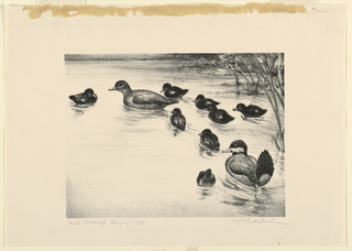 Print, Duck Stamp Design