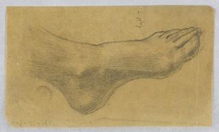 Sketch of a model's foot.