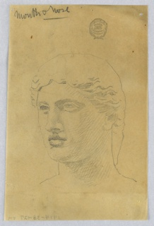 Head of a youth facing slightly to the left.