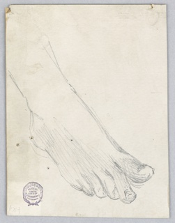 Sketch of a right foot and ankle, from slightly above and to the left.