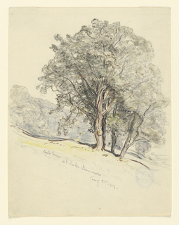 Vertical rectangle.  A group of oaks is shown in the foreground, standing at a hillside with a meadow.  A wood is in the left background.  High bottom margin.