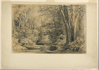 Drawing, A Brook in the Woods, 1854