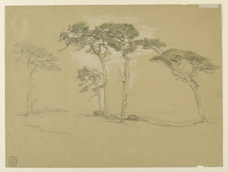 "Horizontal rectangle.  Obverse: ""Wind blown pines/ Pacific Grove,"" five of which are shown.  A hill range is shown in the right background.  Reverse: in opposite direction, top: waves rolling at the rocky coast.  Bottom left vertically: pencil sketch of five trees. Right: Rocky sea shore."