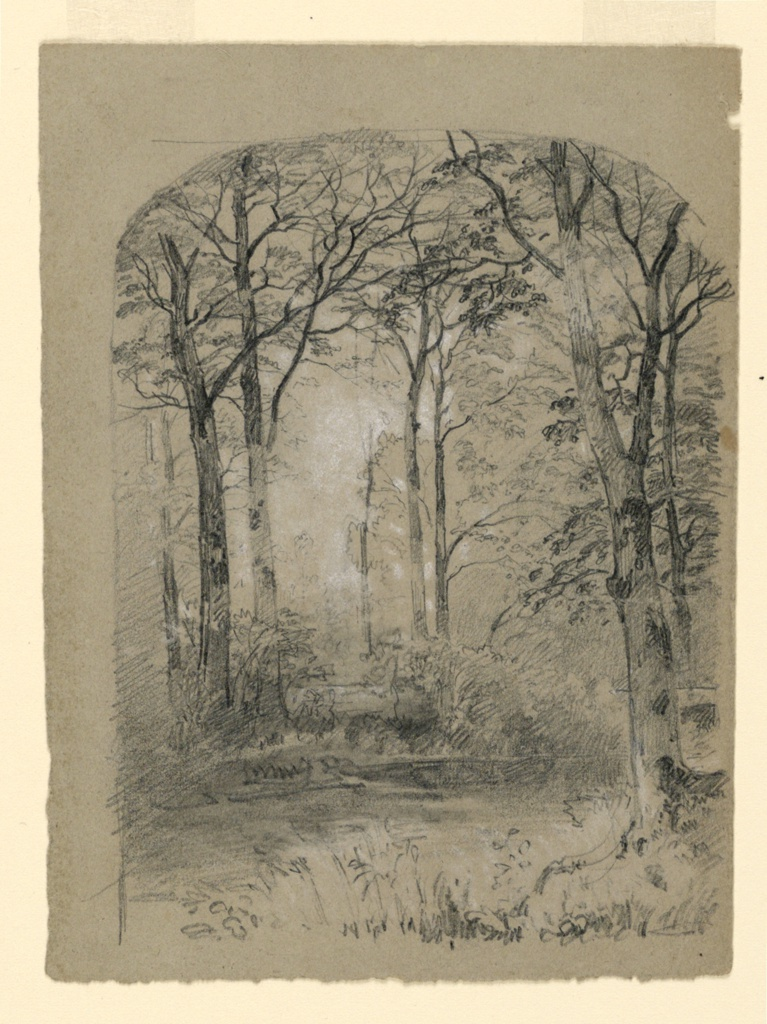 Sketch of a woodland landscape with trees along a riverbank.