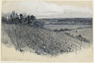 View of a large field with chickens scratching around. Large fields in middle distance.