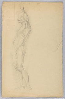 Drawing, Anatomical Study of Male, ca. 1850