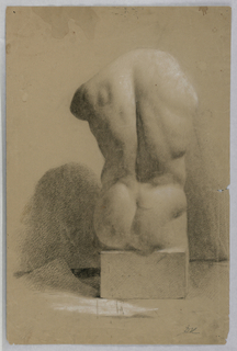 Drawing, Male Torso From a Plaster, 1840