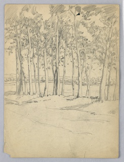 Row of trees extends across the page, tree trunks reaching upward from middle to top. River and its opposite shore are seen through spaces between tree trunks.