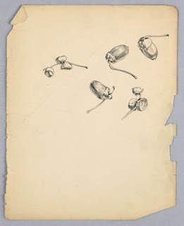 Various sketches of acorns on branches, all varying in size and direction.
