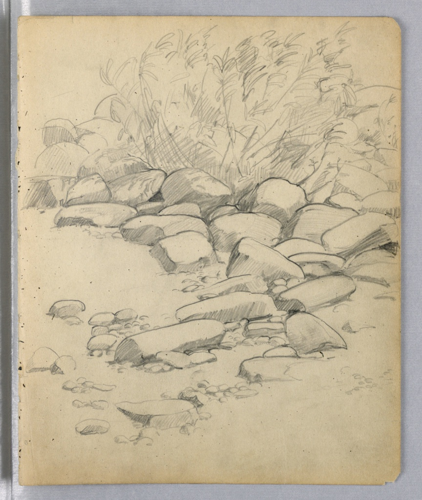 Rocks are in curved position, curving from left lower foreground to right center ground and back to left upper background. A bush with light foliage grows at upper right.