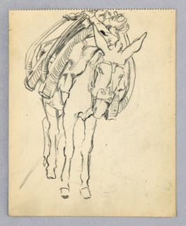 Front view of mule carrying yokes across its back.