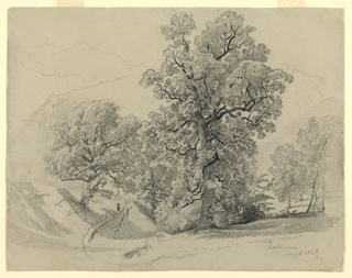 Sketch of landscape with a figure walking on a path and trees with foliage.