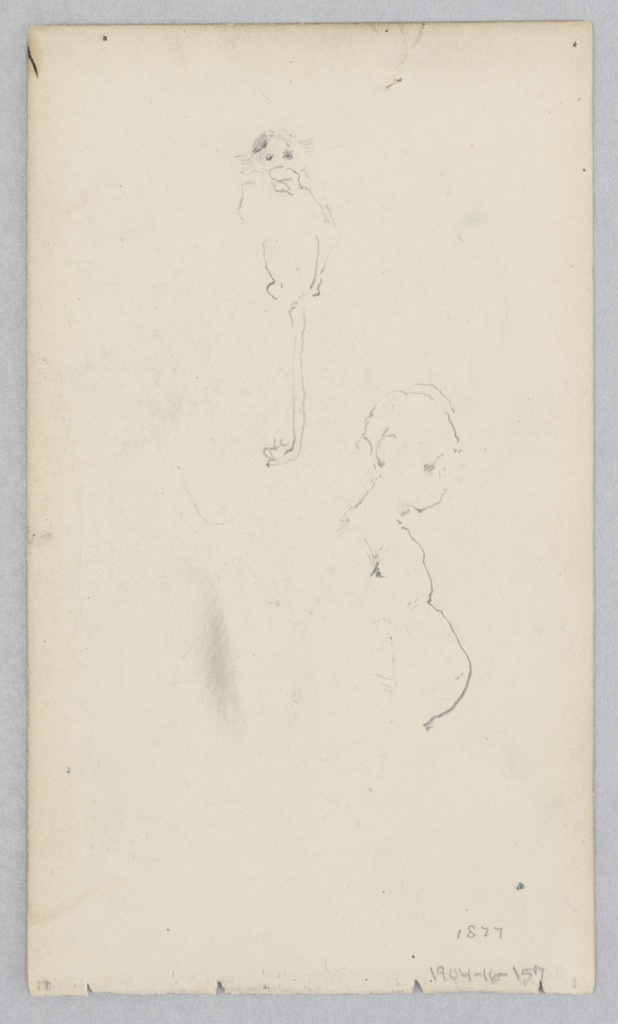 Drawing, Monkey