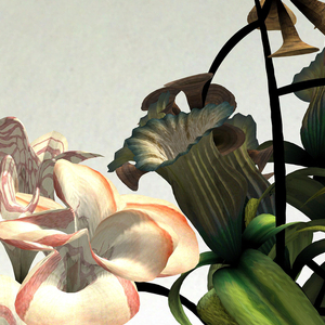 Animation, On Growth and Form, 2013