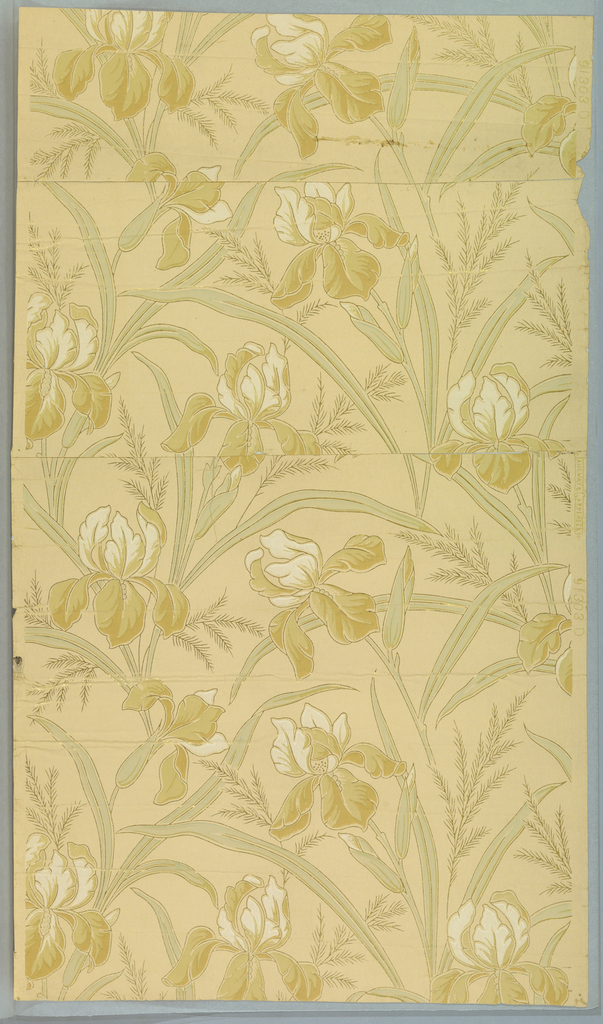 Tan background with white and beige iris design outlined in gold.
