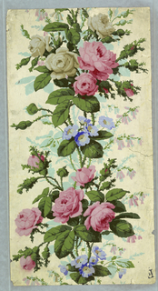 Wide border: large pink and gray clusters of roses joined by trailing stems, small blue flowers - thorny foliage.