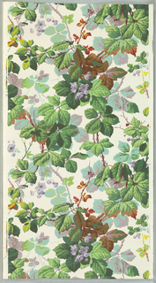 Realistic vining floral pattern, printed in colors, on white ground.  NOTE: 3 duplicates in W131 (61:1:1)
