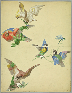 Appliqued block printed cut-outs of cockatoo, parrot, and various other birds, dragon fly, arranged on background sheet in what appears to be a study for a wallpaper design in the Louis XV manner.