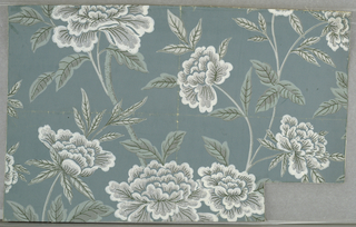 """Design of branching stems and large open flowers (peonies) and leaves. Printed in green, white and two shades of gray on gray-blue ground. Edges have been cut off. Marked on back: """"A.H. Jacobs Co. 509 Madison Ave. N.Y.C.3543 3.75""""."""