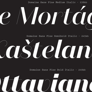 Specimen, Domaine Sans Italic typeface, 2013