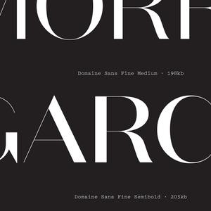 Specimen, Domaine Sans typeface, 2013