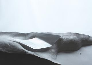 Model, Veiled, 2014