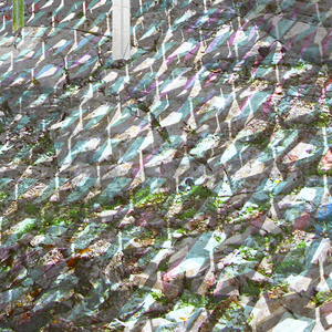 Rendering, Veiled, 2014