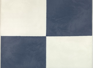 Large-scale blue-and-white check design; checks at top and bottom rows are square while in the center they are rectangular.