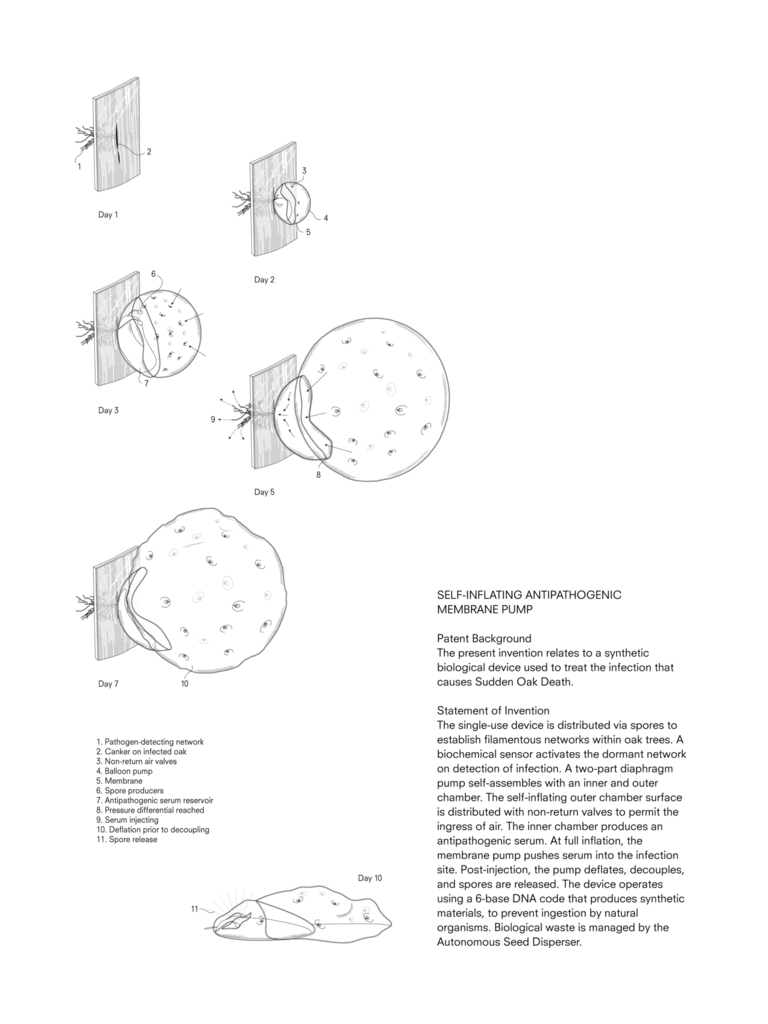 Patent Drawing, Self Inflating Antipathogenic Membrane, from Designing for the Sixth Extinction, 2013