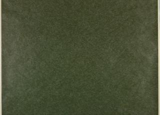 All-over irregular design of pale white mottling on dark green ground; effect reminiscent of worn velvet.