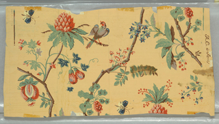 Possible Nancy McClelland reproduction. Exotic vining floral with bird and two butterflies, printed on light terra cotta ground.