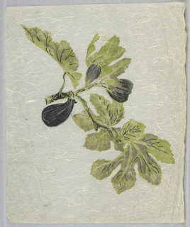 "Figs and leaves. Printed in lavender, green and black on off-white Japanese paper. This is a strike-off for ""Pomegranates and Pineapples""."