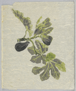 "Figs and leaves. Printed in lavender, black and green on off-white Japanese paper. Strike-off for ""Pomegranates and Pineapples""."