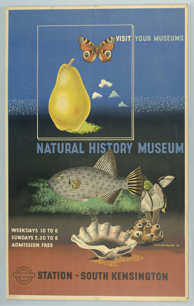 Poster design (this version, a final proof before printing) for the London Underground, advertising the Natural History Museum which can be reached by the railway. Poster features a number of different objects: a pear, a butterfly, fish, shells, and coral. Text in white, blue and black: VISIT YOUR MUSEUMS / NATURAL HISTORY MUSEUM / WEEKDAYS 10 TO 6 / SUNDAYS 2.30 TO 6 / ADMISSION FREE / [London Underground logo] STATION-SOUTH KENSINGTON.