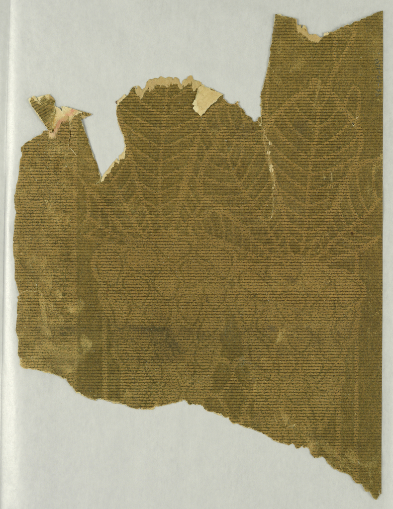 Fragments of floral stripe wallpaper, printed in brown on tan ground. Large rhododendron-like leaves with bulbous, cone-shaped flower.