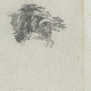 Horizontal view of a series of sketches from the Rio Magdalena, Columbia: Trees reflected in water at top left; a group of trees at right; and bank of the river at bottom.