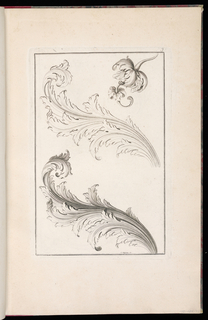 Two acanthus leaf ornament designs, including a pod and flower
