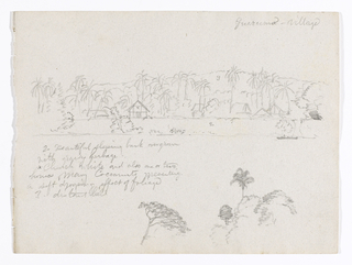 "Horizontal view on upper part of the sheet of a steep river bank with a church, houses, many palms and a single boat filling the foreground with hill range in the background, and on the lower part of the sheet a tree top is visible at bottom center and a palm rises over bushes and a tree at bottom right.     in the background, a boat is in the foreground.  Figures and mark inscribed, explained bottom left: ""2 Beautiful sloping band overgrown / with grassy herbage / x Church white and also one or two / houses.  Many cocoanuts presenting / a soft drooping effect of foliage / 3 distant hill.""  Bottom right, top of a tree and a palm rising over bushes and a tree.  Place name top right: ""Guarumo-village."""