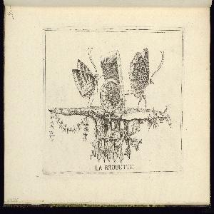Bound Print, Plate 2 (Suite 1), La Brouette (The Bath Chair), Essai de papilloneries humaines (Ideas for Scenes with Butterflies Masquerading as Humans)