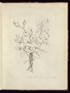 Print (France), 1736–85