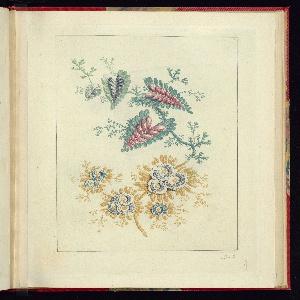 Print, Plate 3, Ornamental Design, Nouvelle suite de cahiers de flerurs naturelle a l'usage des dessinateurs et des peintres, No. 1