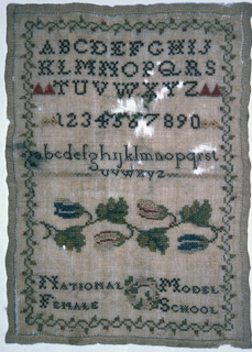 Alphabets, numerals, floral cross border and text.