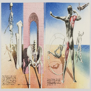 Booklet Pages, Pages from Das Wunder des Lebens (The Miracle of Life)