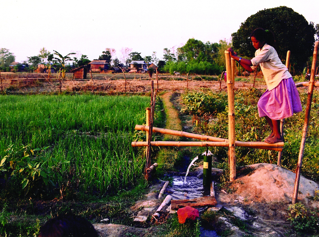Bamboo Treadle Pump, 2006
